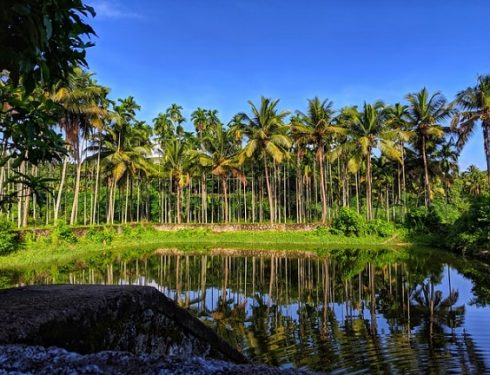 south india 4